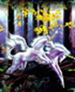 A la recherche du couple de Licornes du Jardin d'Eden