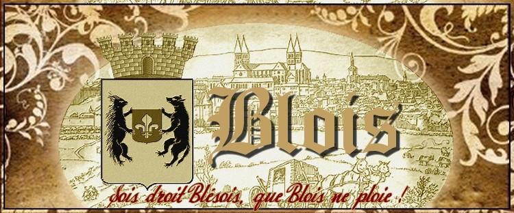 Bienvenue dans la Ville de Blois