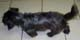 PLUCKY (mâle croisé Yorkshire-Teckel de 9 ANS) - ADOPTE -