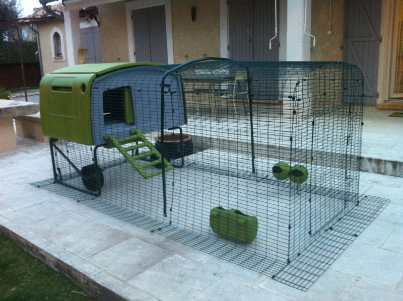 Biomasse poulailler poulailler for Top 10 des poules pondeuses