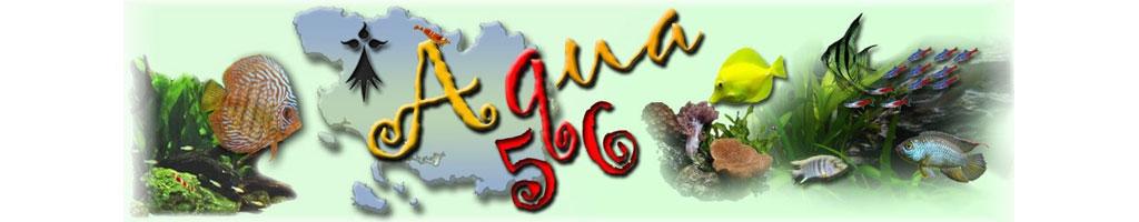 FORUM AQUA56