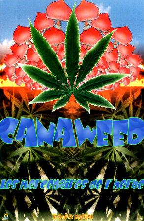 canaweed