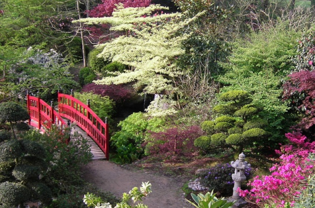 jardin10.jpg