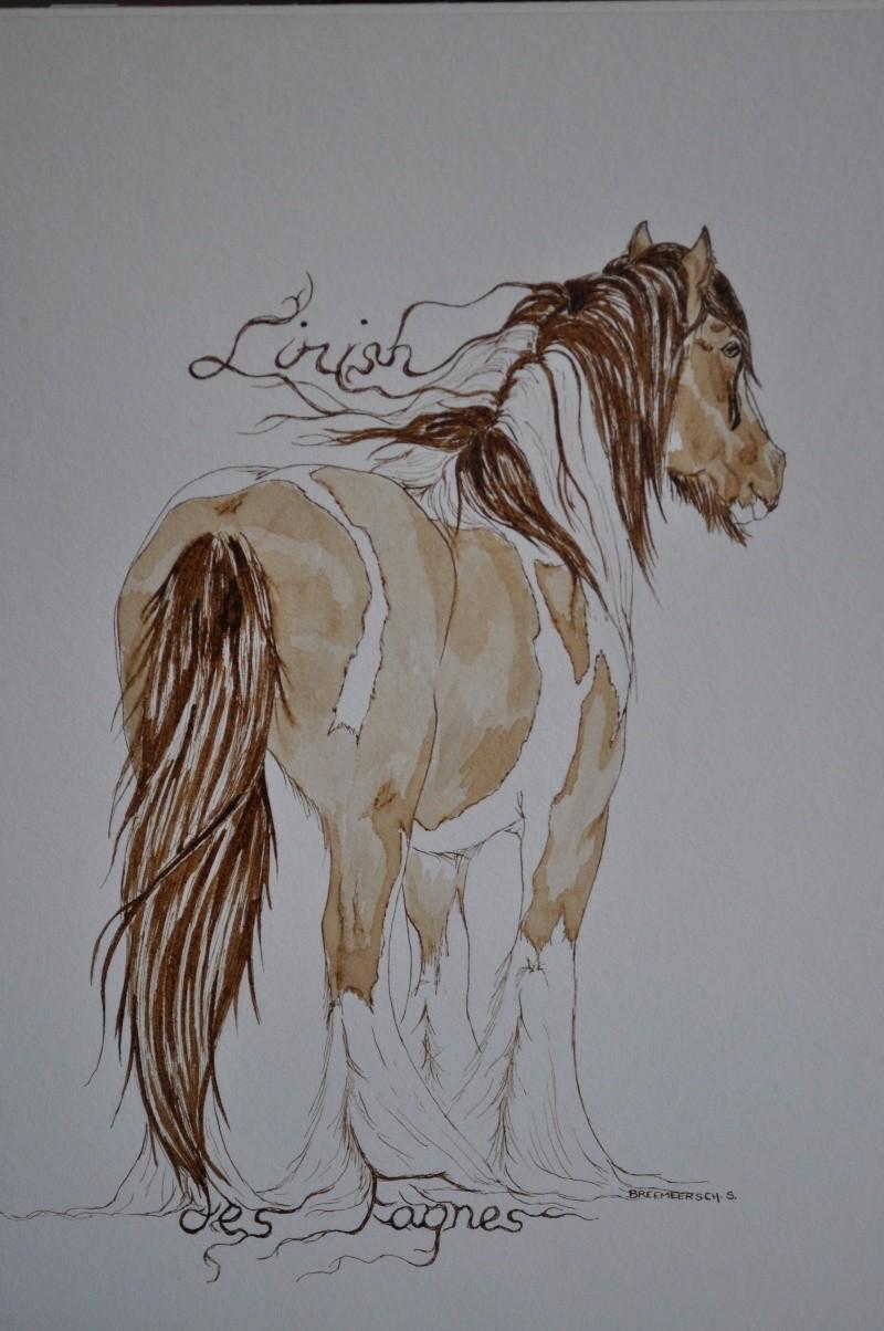 Dessins chevaux et autres animaux page 4 - Chevaux dessins ...