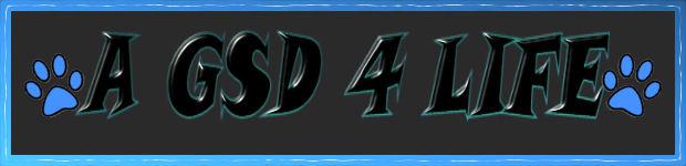 A GSD 4 LIFE