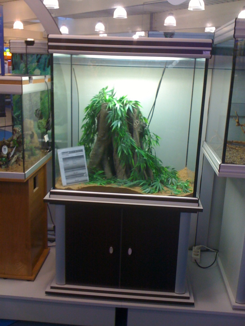 décoration aquarium 300l