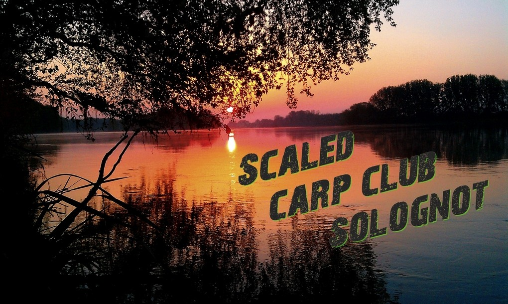SCALED CARP CLUB SOLOGNOT