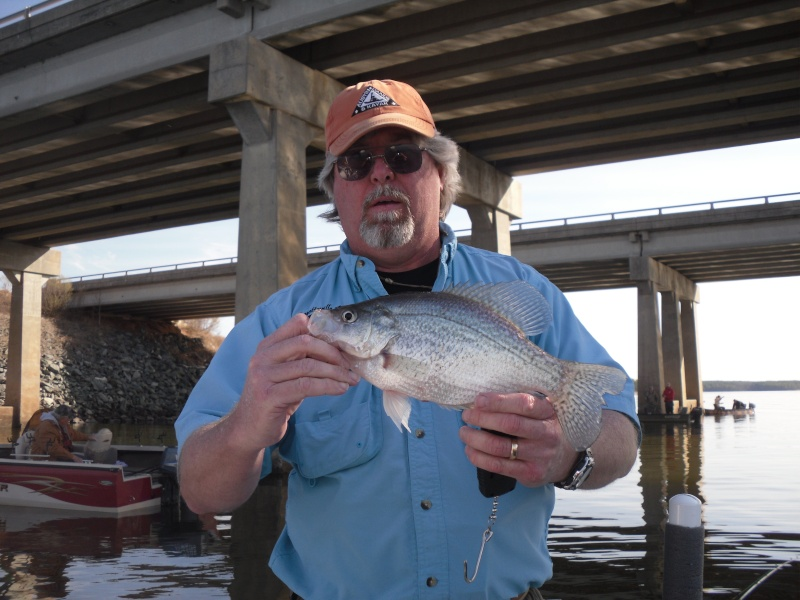 Jordan lake crappie report for Fishing in fayetteville nc