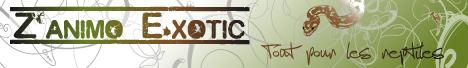 Z'animo E.xotic - Tout pour les reptiles